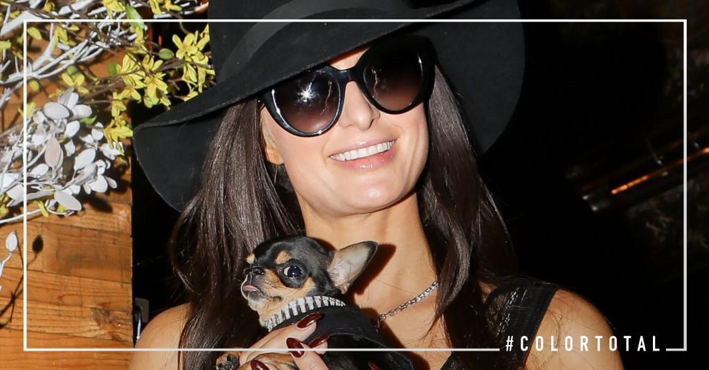 ¡Paris Hilton morena! Sorpréndete con su nuevo look